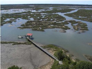 Village at Secessionville exclusive 40 lot waterfront community with estate size lots, dock permits, and marsh views.